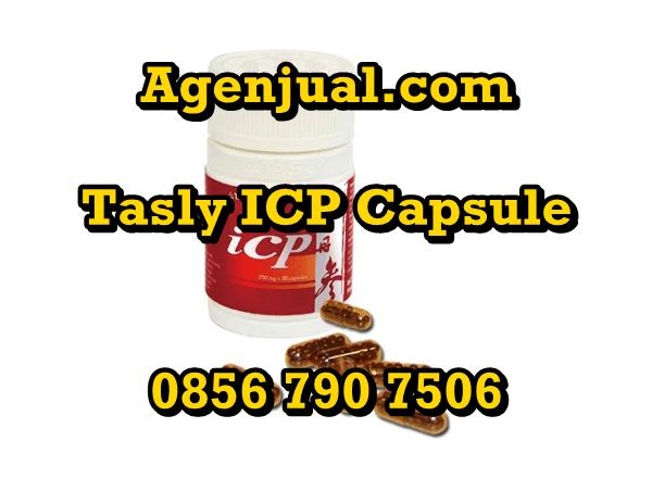 Agen Tasly ICP Capsule Kendari | 0856-790-7506